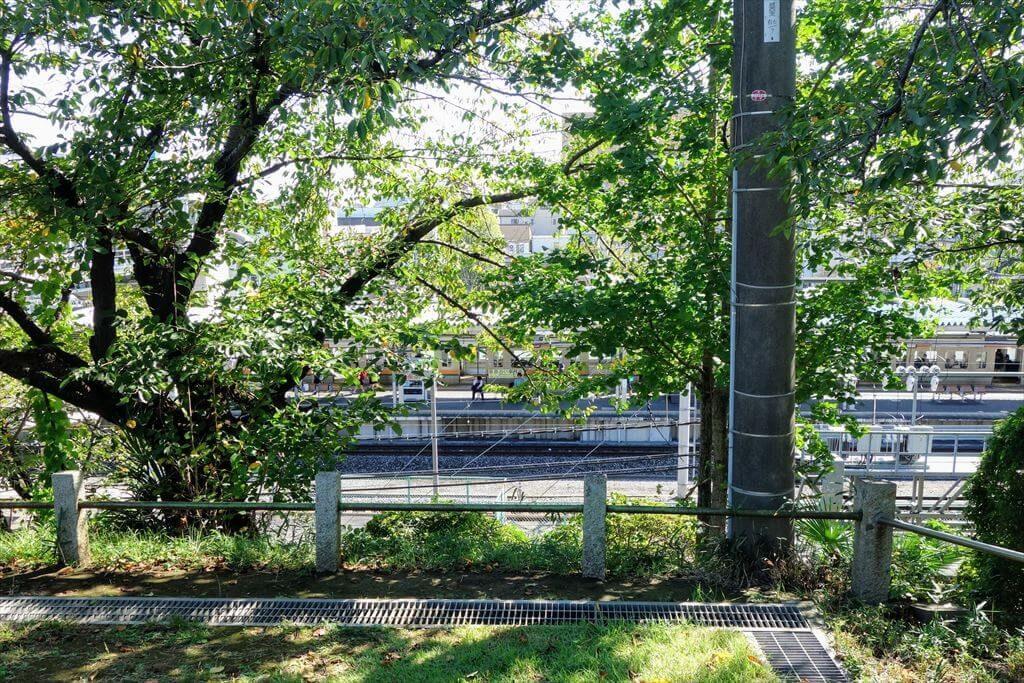 城山公園から電車が見れる