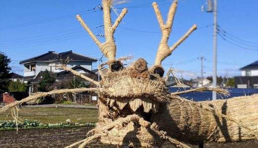 【見学レポ】ジャガマイタの稲わらアートが迫力満点!小山市の間々田で展示中!