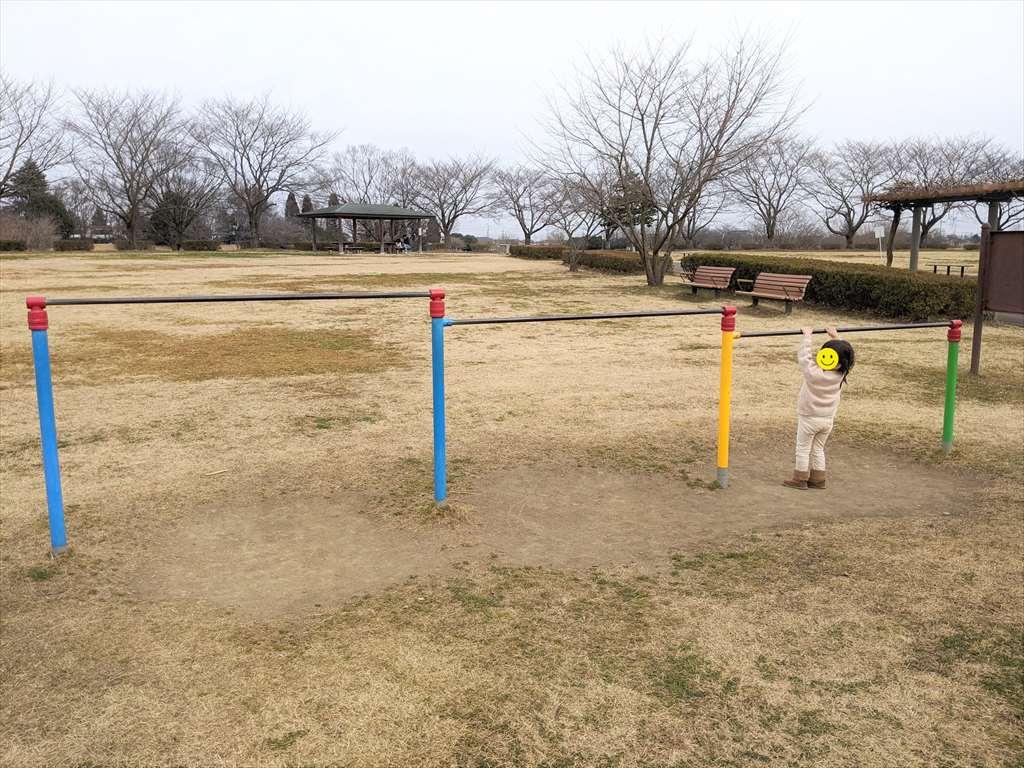 永野川緑地公園の鉄棒